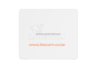 Grandstream GWN7602 Compact Wi-Fi Access Point Kenya